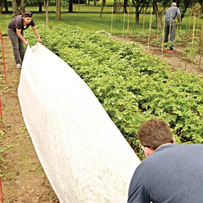 Reemay garden blanket cool tools