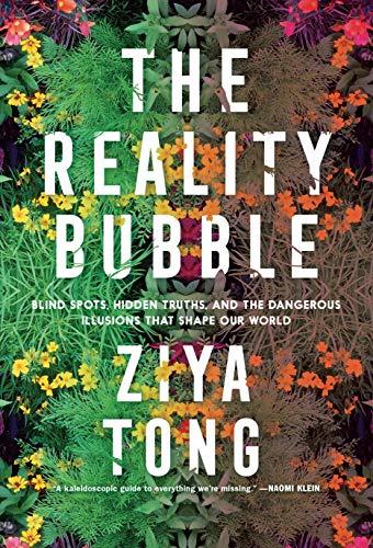 realitybubble