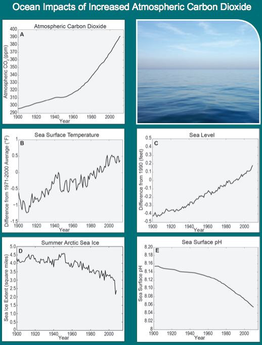 NCA-CO2-ocean-impacts-1900-2000