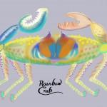 37-Rainbow_Crab