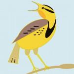 106-Meadowlark