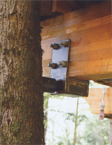 treehouse7.jpg