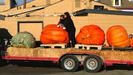 Pumpkin Trailer