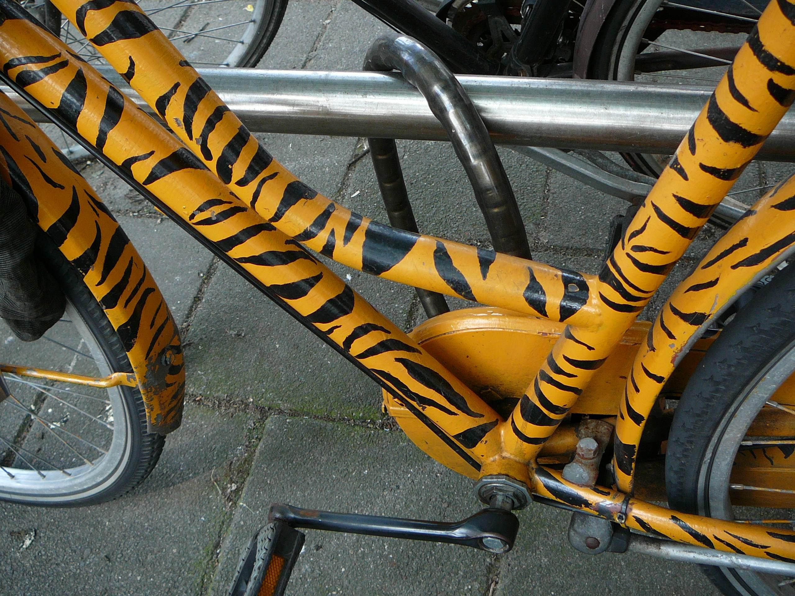 tiger stripe bike