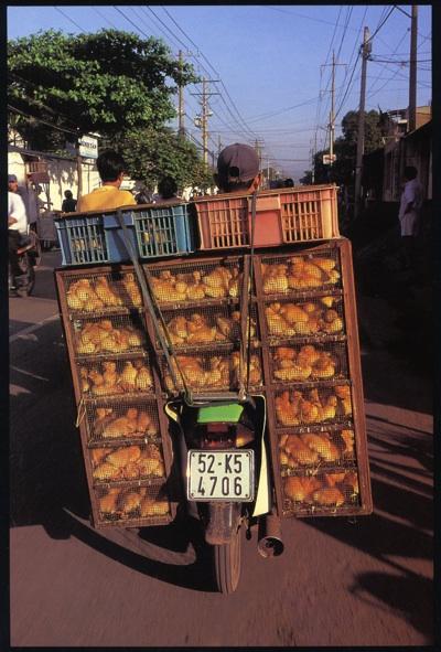 Bike Burden2