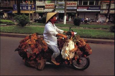 Bike Burden3