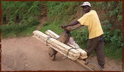 Woodenbikeman
