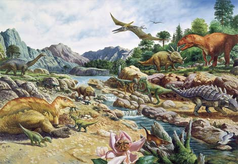 Cretaceous-Collection-Be5061-Ga